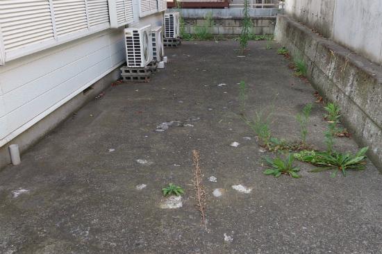 千葉寺の中古一棟アパート